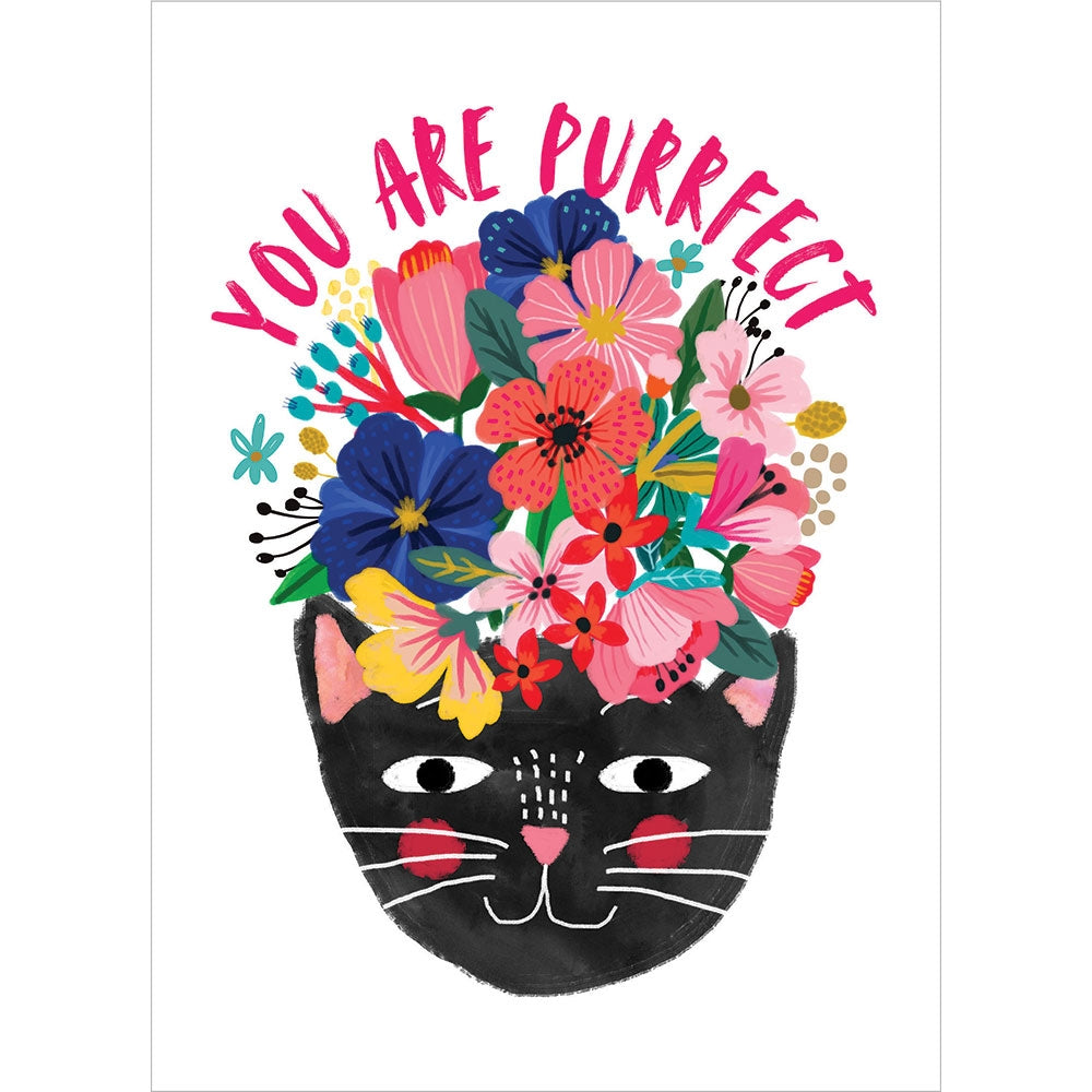 You Are Purrfect All Occasion Greeting Card 6 pack