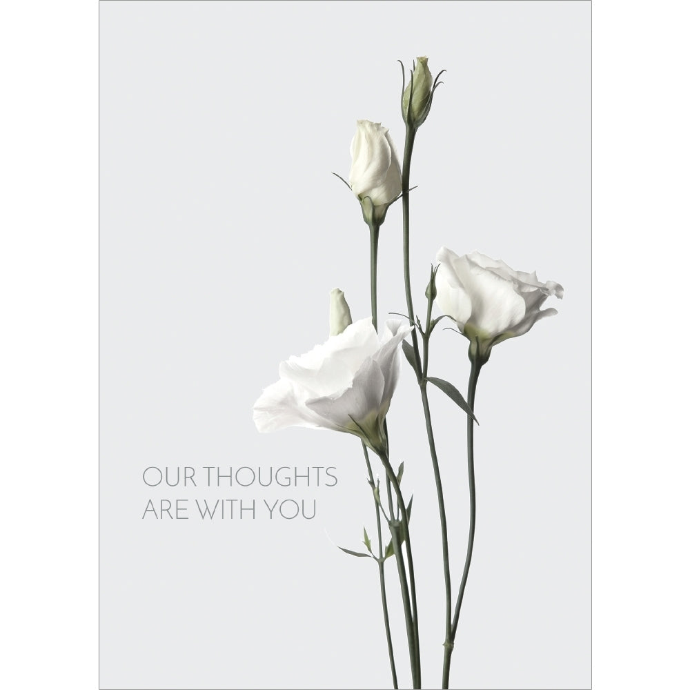 Elegant Thoughts Sympathy Greeting Card 6 pack