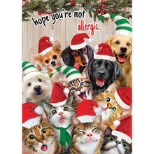 Load image into Gallery viewer, Selfie Pet Christmas Greeting Card 4 Pack