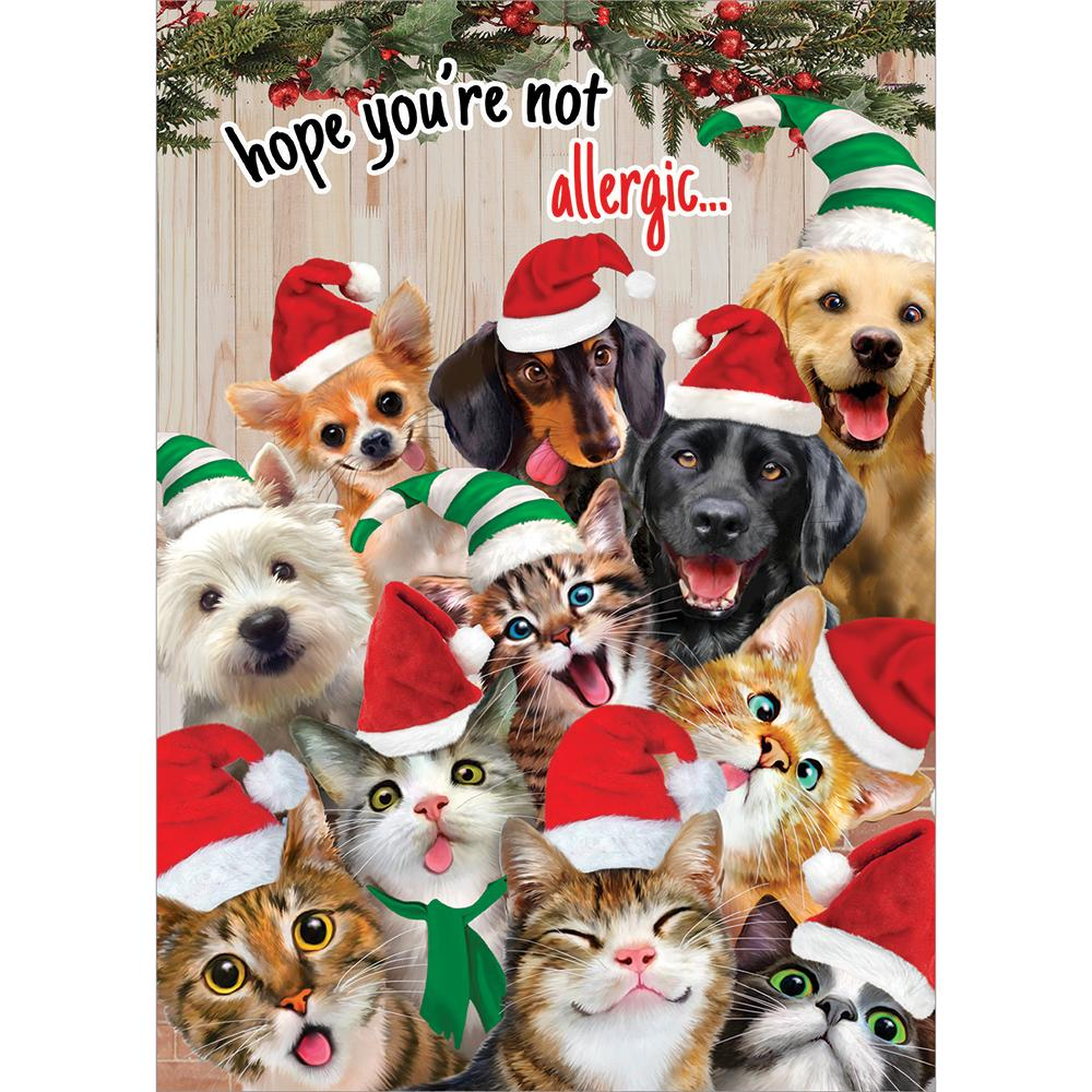 Selfie Pet Christmas Greeting Card 4 Pack