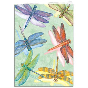Dragonflies All Occasion Greeting Card 6 pack