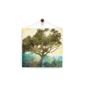 Tree of Time  All Occasion Thumb-Tack Canvas Art Card 4 pack