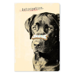 "Anticipation Birthday ECOnote 4""x6"" Greeting Card 8 pack"