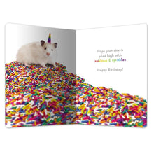 "Load image into Gallery viewer, Rainbow Sprinkles Birthday ECOnote 4""x6"" Greeting Card"