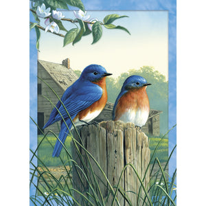 Morning Bluebirds All Occasion Greeting Card