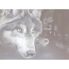 Load image into Gallery viewer, Wolf Reflection All Occasion Greeting Card