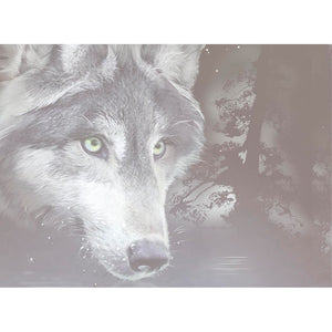 Wolf Reflection All Occasion Greeting Card