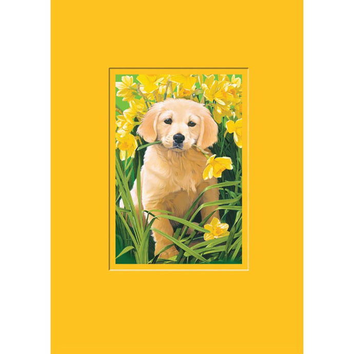 Grateful Puppy Thank You Greeting Card