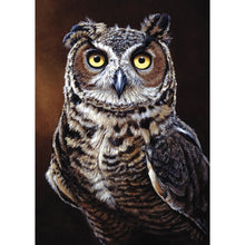 Load image into Gallery viewer, Great Horned Owl All Occasion Greeting Card