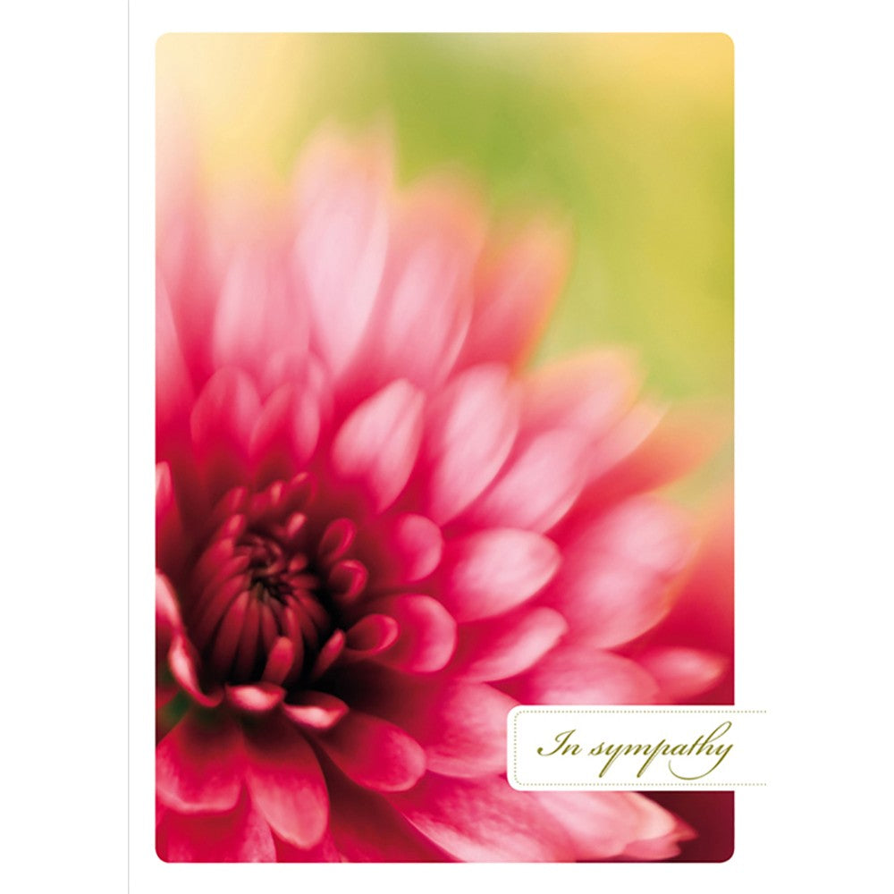 Comfort And Peace Sympathy Greeting Card