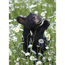 Load image into Gallery viewer, Daisy Bear All Occasion Greeting Card