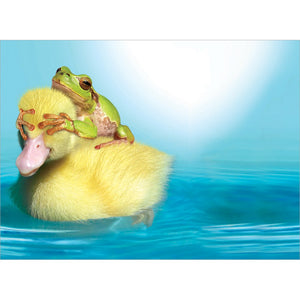 Duck Duck Frog Thanks Thank You Greeting Card