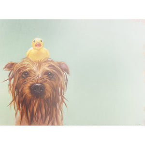 Rubber Ducky All Occasion Greeting Card