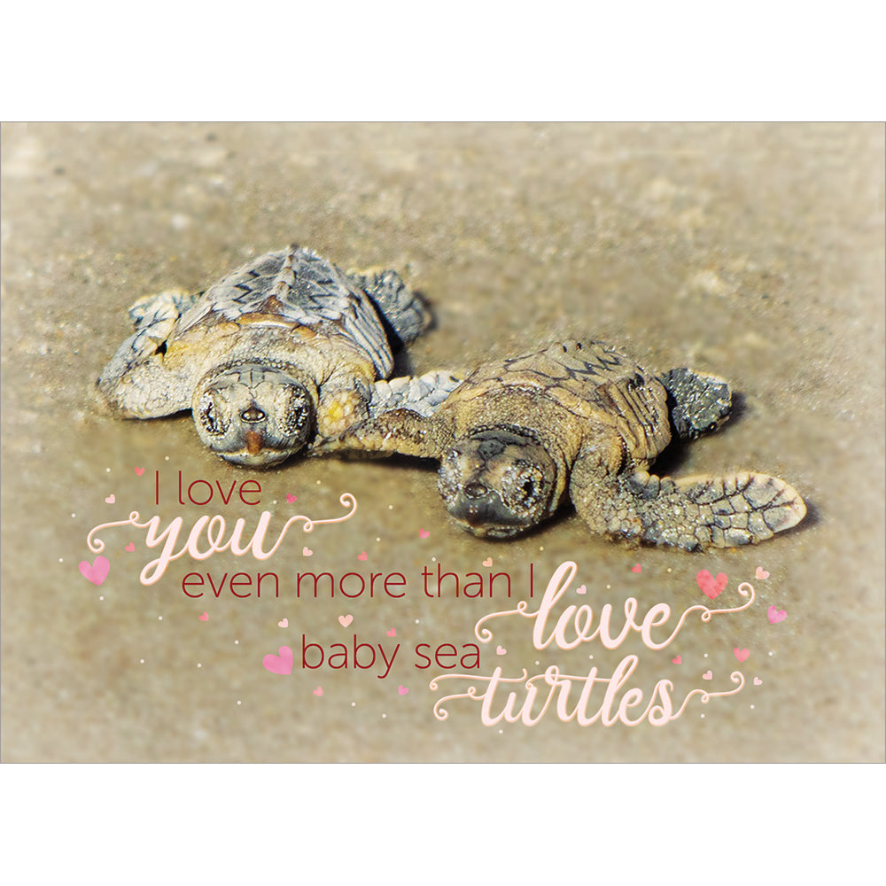 Send This Love You More Than Turtles Valentine's Day Card