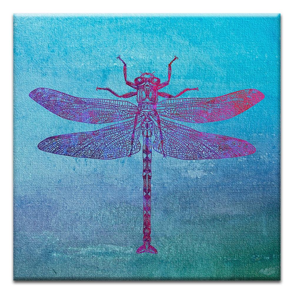 Dragonfly Print  All Occasion Thumbtack Canvas Art Card