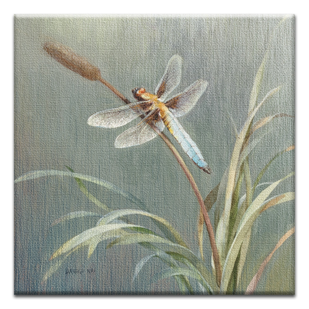 Danhui Dragonfly  All Occasion Thumbtack Canvas Art Card