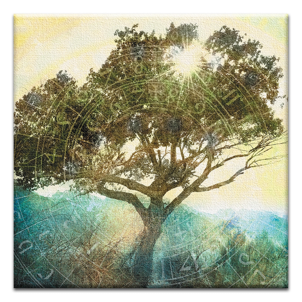 Tree of Time  All Occasion Thumbtack Canvas Art Card