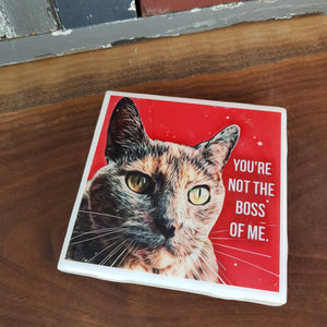 Cat Coaster - You are not the boss of me!