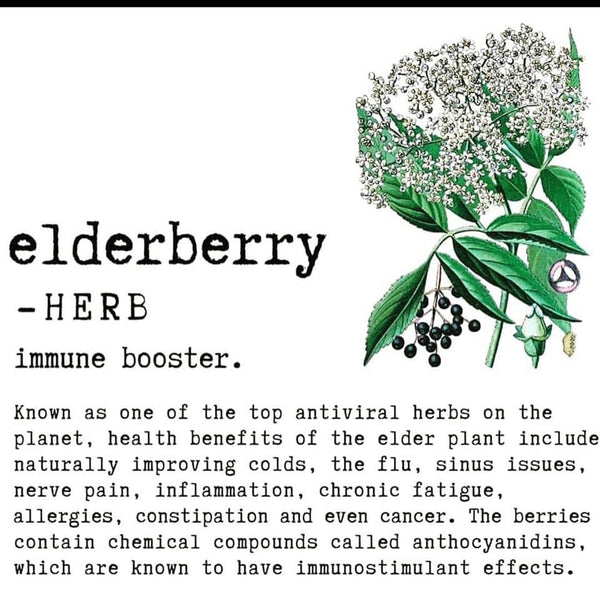 Elderberry Organic Syrup - Cassie's Natural Living