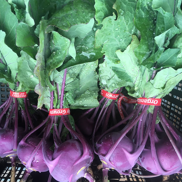 Kohlrabi Bunch Organic, Joe's Farm