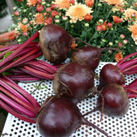Red Beets, Joe's Farm