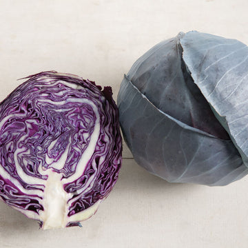 Organic Purple Cabbage , head