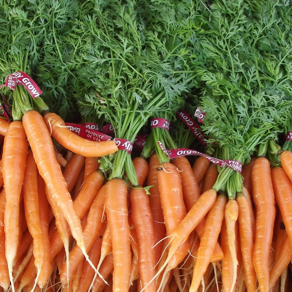Carrots Organic (Joe's Farm) Bunch