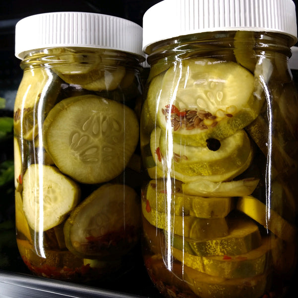 Dale & Daughter Bar Harbor Pickles, 16 oz. jar