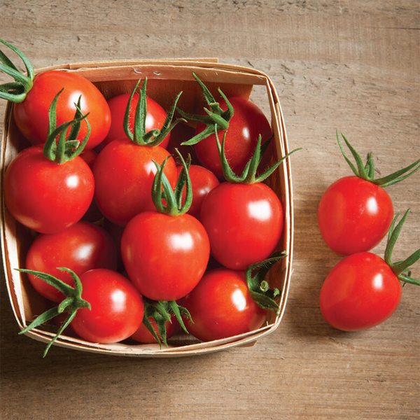 Organic Cherry Tomatoes, Joe's Farm