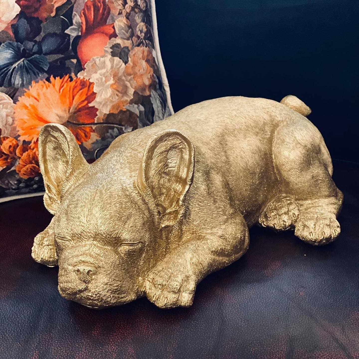 Golden Frenchie