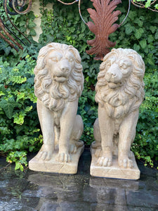 Concrete Lion - Pair Available