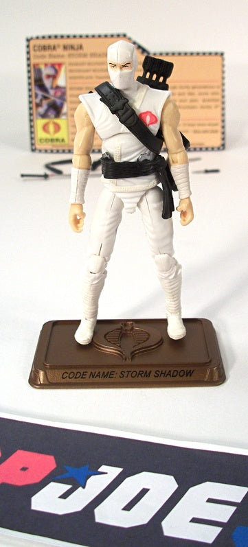 2009 25TH ANNIV G.I. JOE COBRA STORM SHADOW V31 HALL OF HEROES INTERNET EXCLUSIVE 100% COMPLETE + F/C
