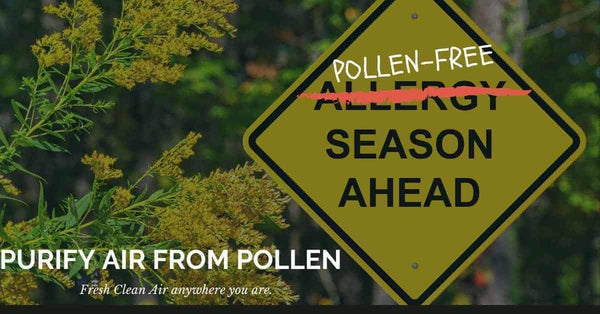 Air Purifiers for Allergies and air purifier for pollen allergies