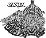 2007 Saxum James Berry Vineyard Bone Rock Syrah - 99 pts - 750ml