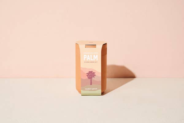 Grow Your Own Palm Plant Kit