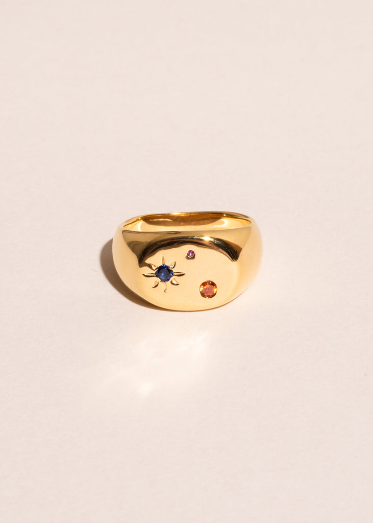 Seal Signet Ring with Mixed Stones