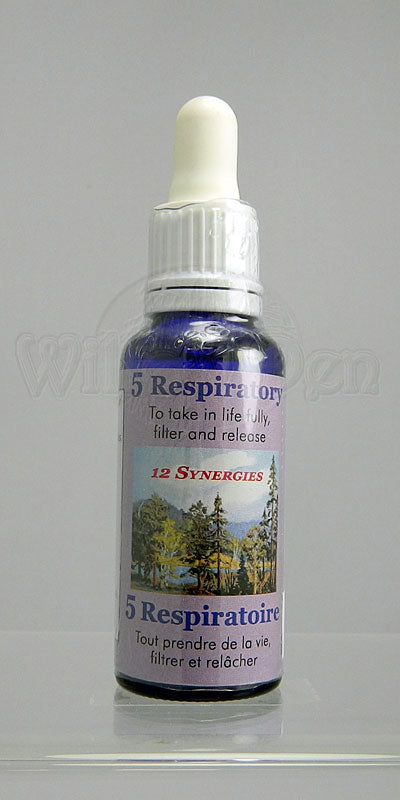5 - Breathe Essence (Respiratory)