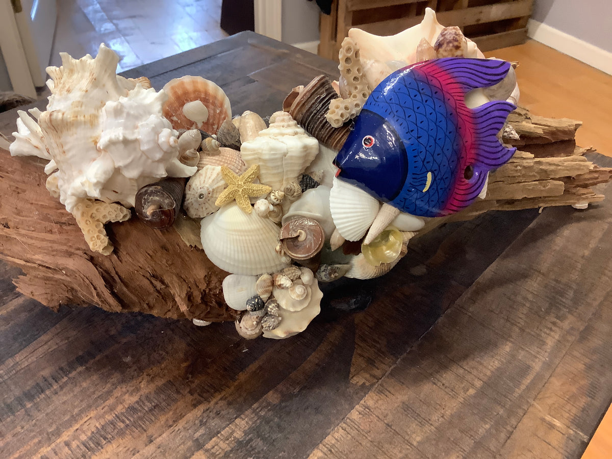 Driftwood with shells tang fish