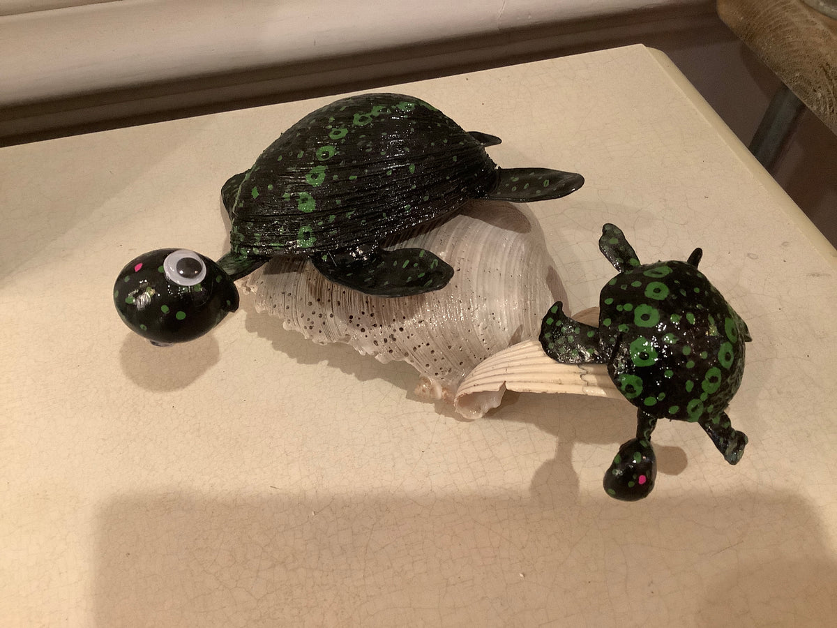 Turtles made from shells