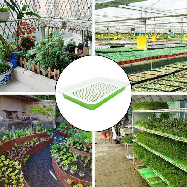 1 Set of Double-layer Bean Sprouts Vegetable Seedling Tray