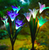 Lily Solar Garden Stake Lights