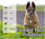Flealess Ultrasonic Flea & Tick Repeller