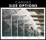 STRETCHED CANVAS - REFLECTION - Canadian Polar Bear Habitat Market