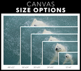 STRETCHED CANVAS - MAKING A SPLASH - Canadian Polar Bear Habitat Market