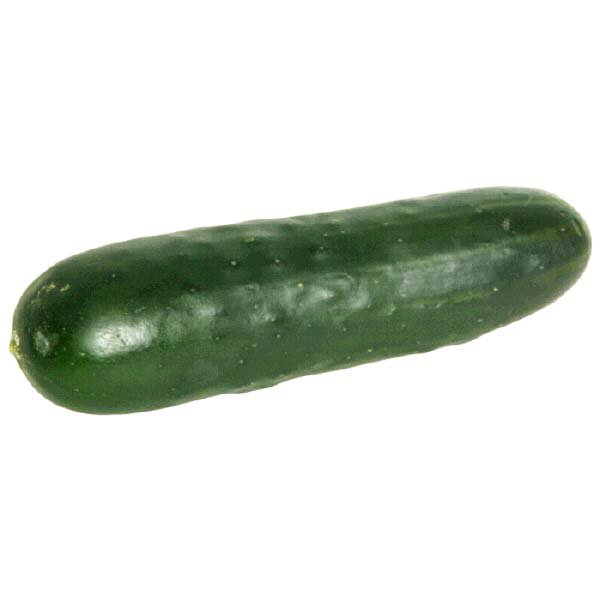Fresh Cucumber - 1 Each