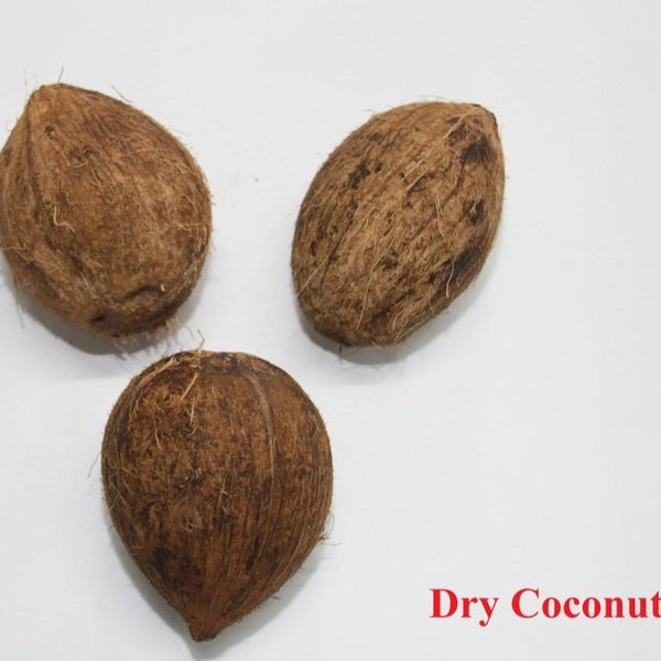 Fresh Coconut - 1 Each