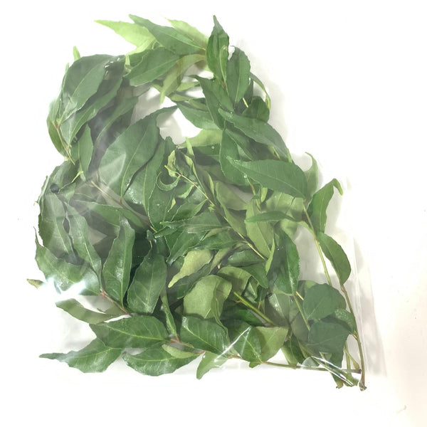 Bulk Quantity Wholesale Fresh Curry Leaves - 1/2lb