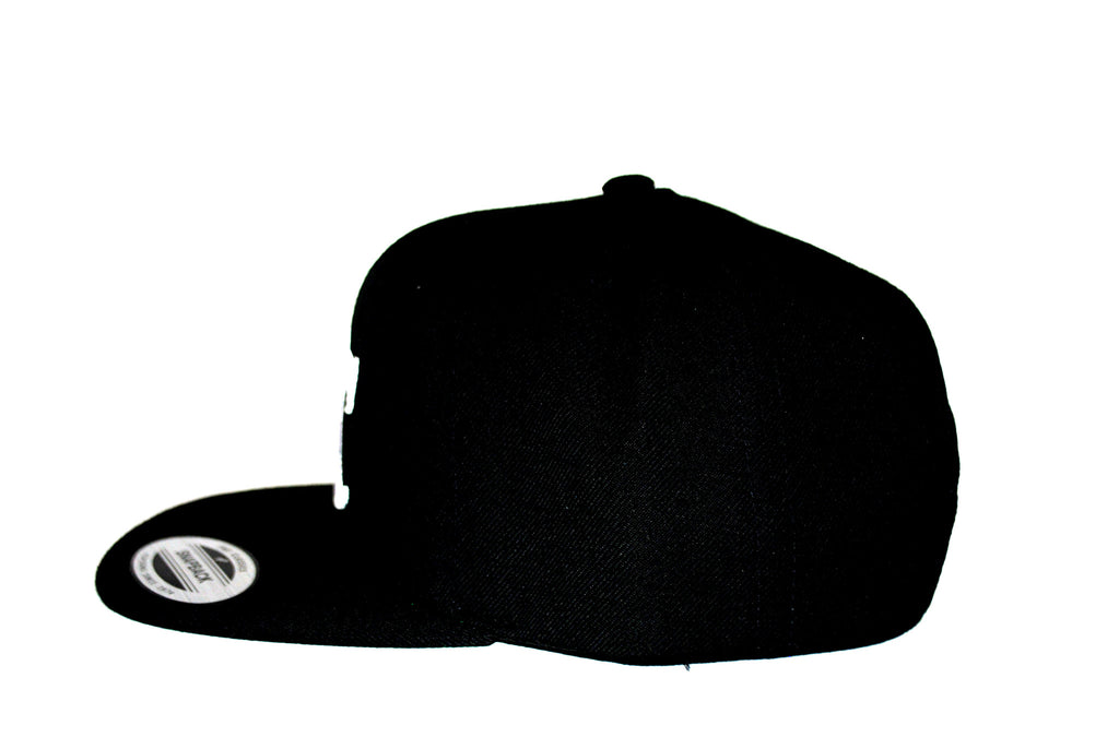 DTC Snap Back