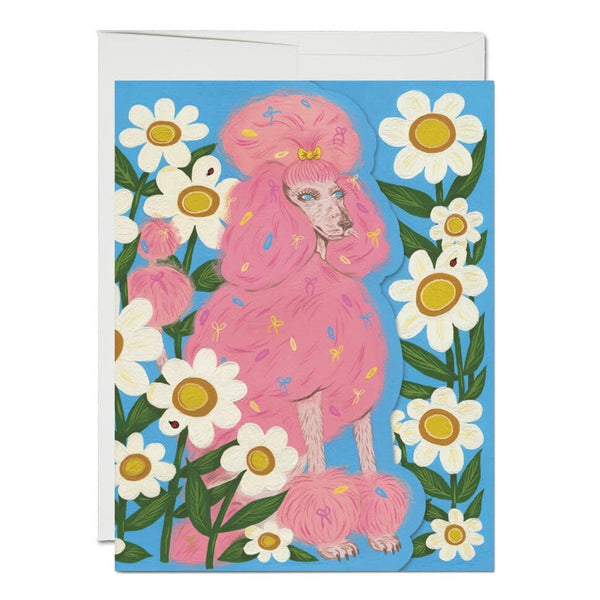 Pink Poodle ✹ Greeting Card