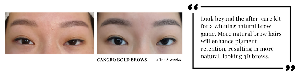 more brow hair growth after using Bold Brows Eyebrow Enhancer